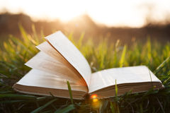 Ouvrez le livre sur l'herbe Photographie stock libre de droits