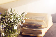 Ouvrez le livre sur un oreiller dans le lit homeliness Vieux livre texture sans couture des pages de livre Vieux livres de cru Photographie stock