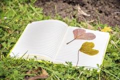 Ouvrez le livre sur une herbe verte avec les feuilles en forme de coeur d'automne Photos stock