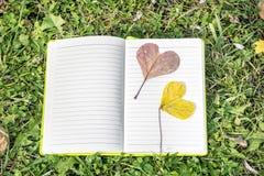 Ouvrez le livre sur une herbe verte avec les feuilles en forme de coeur d'automne Photos libres de droits