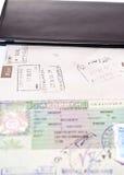 Ouvrez le passeport Photographie stock libre de droits