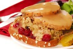 Ouvrez le sandwich à dinde fait face Photo stock