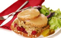 Ouvrez le sandwich à dinde fait face Images stock