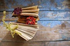Ouvrez les livres sur le fond en bois Image libre de droits