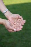 Ouvrez les mains Photographie stock libre de droits