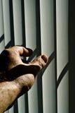 Ouvrez les nuances Image libre de droits