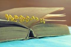 Ouvrez toujours le vieux livre avec les fleurs jaunes de mimosa sur la table sous la lumière du soleil chaude - la vie de ressort Photo stock