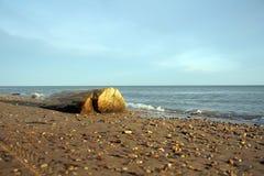 Ouvrez une session la plage Photographie stock