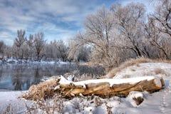 Ouvrez une session le fleuve de l'hiver Photographie stock