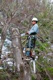 Ouvrier avec la tronçonneuse faisant une pause Images libres de droits