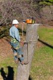 Ouvrier avec la tronçonneuse Image stock