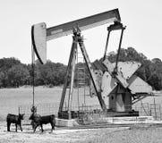 Ouvrier chargé des pompes de puits de pétrole du Texas images libres de droits