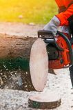 Ouvrier de bûcheron avec la tronçonneuse dans la forêt Photo stock