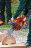 Ouvrier de bûcheron avec la tronçonneuse dans la forêt Image stock