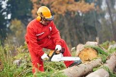 Ouvrier de bûcheron avec la tronçonneuse dans la forêt Photo libre de droits