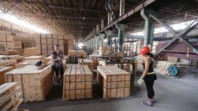 Ouvrier de femme dans le casque transportant des briques réfractaires d'emballage avec la grue de portique sur rail d'atelier banque de vidéos