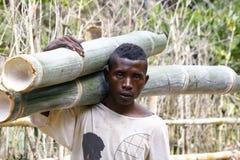 Ouvrier dur portant un tronc d'arbre - MADAGASCAR Image stock