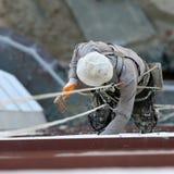 Ouvrier industriel d'alpinisme (peintre) Photographie stock