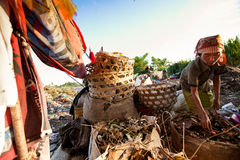 Ouvriers dans un balayage au vidage mémoire Photo libre de droits