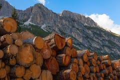 Ouvrir une session les dolomites, l'Italie Photographie stock