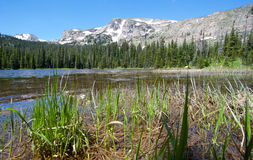 Ouzel lake Lake in Rocky Mountains in summer Stock Photo