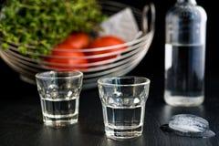 Ouzo ou Raki traditionnel de boissons photos libres de droits