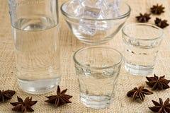 Ouzo ou Raki traditionnel de boissons photographie stock libre de droits