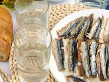 Ouzo and tsipouro Royalty Free Stock Photography