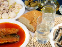 Ouzo and tsipouro Royalty Free Stock Photo