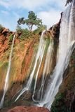 Morocco, Ouzoud Falls royalty free stock photography