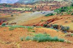 Ouzoud wąwozy, Maroko, Afryka Zdjęcie Royalty Free