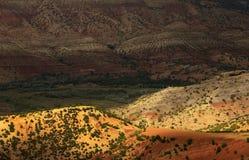 Ouzoud wąwozy, Maroko, Afryka Fotografia Stock