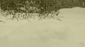 Oväntat i dag gick snöfall arkivfilmer