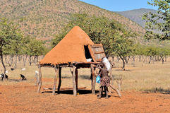 Ovahimba food storage room on stilts Stock Image
