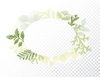 Oval border with branches and leaves decoration Royalty Free Stock Images