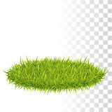 Oval Carpet Of Grass Stock Images