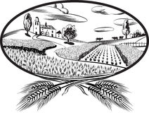 Oval with ears of wheat Stock Images