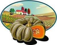 Oval frame with agricultural landscape and pumpkin. In foreground royalty free illustration