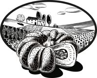 Oval frame with agricultural landscape and pumpkin. Oval frame with agricultural landscape and a pumpkin in foreground stock illustration
