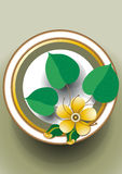 Oval frame with a delicate yellow flower Royalty Free Stock Image