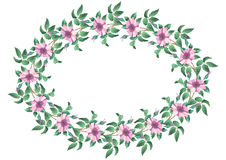 Oval frame from flowers Royalty Free Stock Images