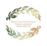 Oval frame of laurel leaves Stock Image