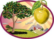 Oval frame with plums and fruit trees on sky background. Oval frame with plums and fruit trees Stock Photos