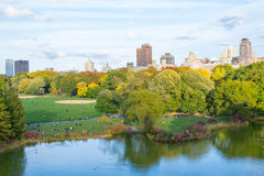 Oval lawn in Central park Stock Image