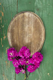 Oval plaque and pink flowers Royalty Free Stock Images
