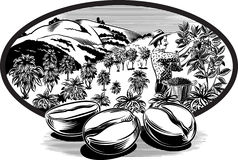 Oval ram, med kaffebönor Royaltyfri Bild
