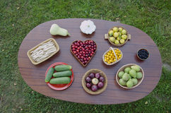 Oval table on garden grass with fruits and vegetables Stock Images