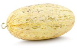 Free Oval Uzbek Russian Melon Isolated On White Royalty Free Stock Image - 164860396