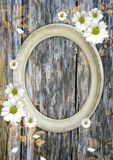 Oval vintage frame on a wood wall Stock Photography