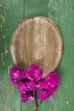 Ovala platta- och rosa färgblommor Royaltyfria Bilder